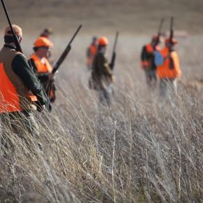 The Hunt Camp: 11Essentials